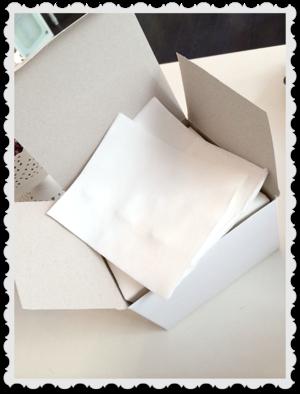 Pensel pads för akryl samt gel penslar 100 pack