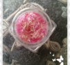 sr043 Neon rose